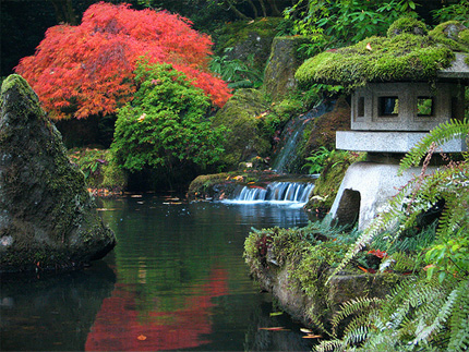 Japanese garden