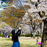 Photographing Sakura Around Osaka Castle