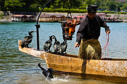 Cormorant fisher
