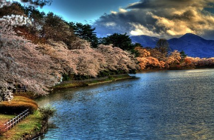 Spring in Japan