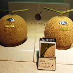 Bizarre Japan – The $100 Melon